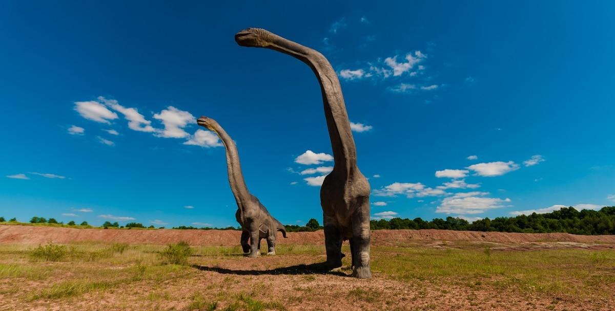explicación de cómo se comportaban los dinosaurios