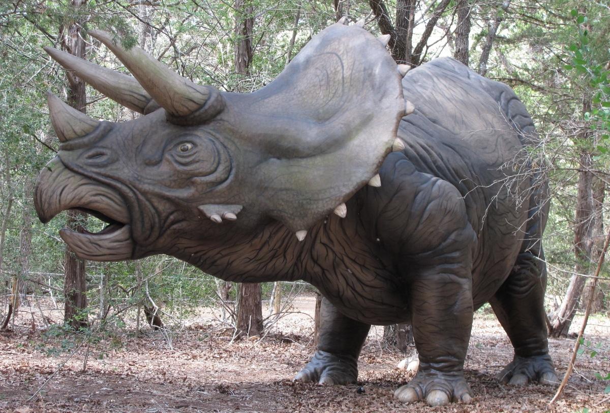 Comportamiento social y hábitat del Triceratops