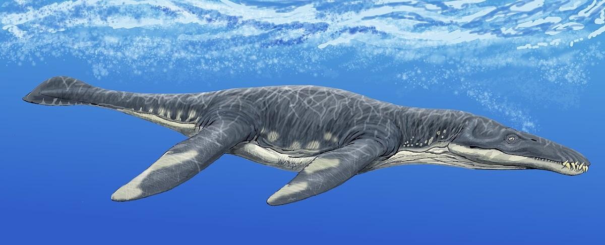 El liopleurodon era capaz de acelerar muy rápido en el agua y fue el dinosaurio marino más peligroso
