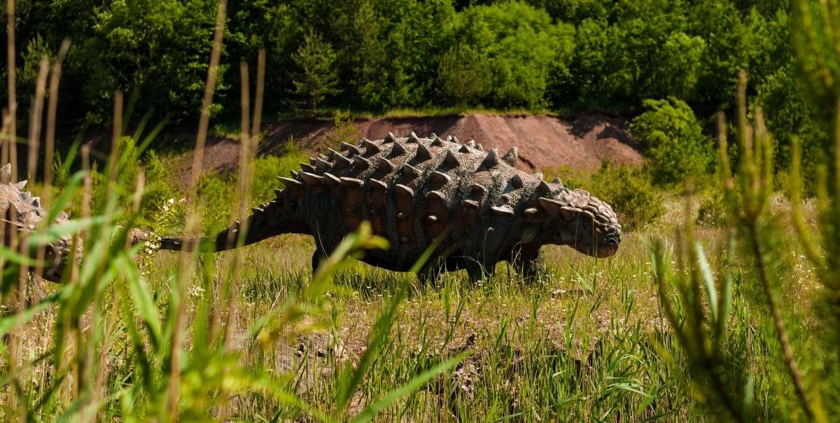 El anquilosaurio usaba la bola de su cola como maza para defenderse