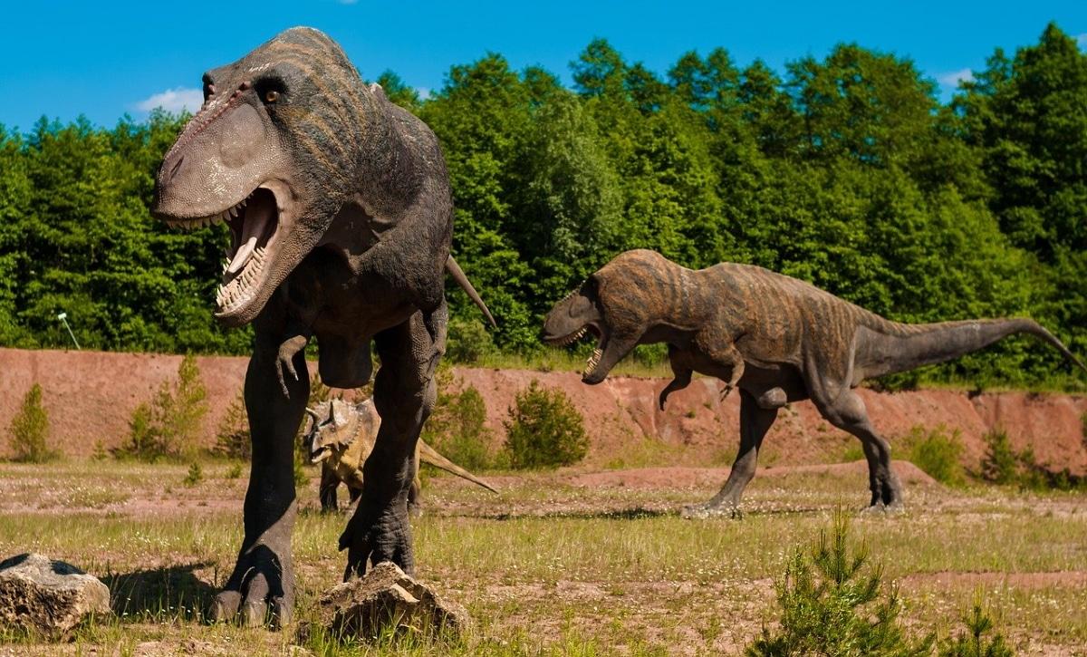 El giganotosaurus no era muy veloz, y podría haber atacado a sus presas en emboscadas