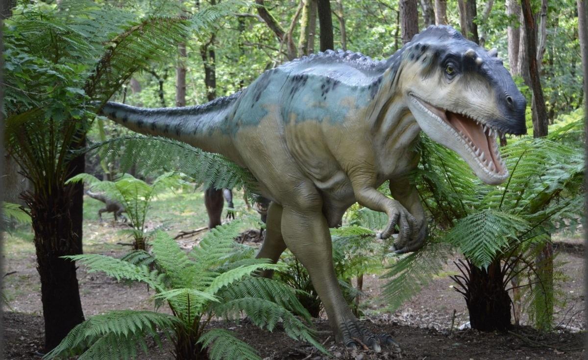 El Giganotosaurus tenía una movilidad de lado a lado de la cabeza muy notable