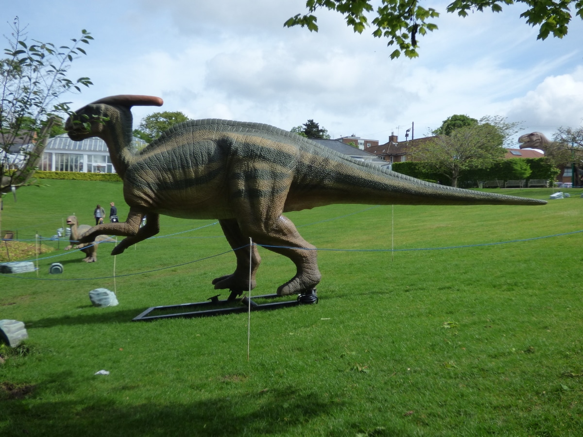 Existieron 3 tipos de Parasaurolophus distintos