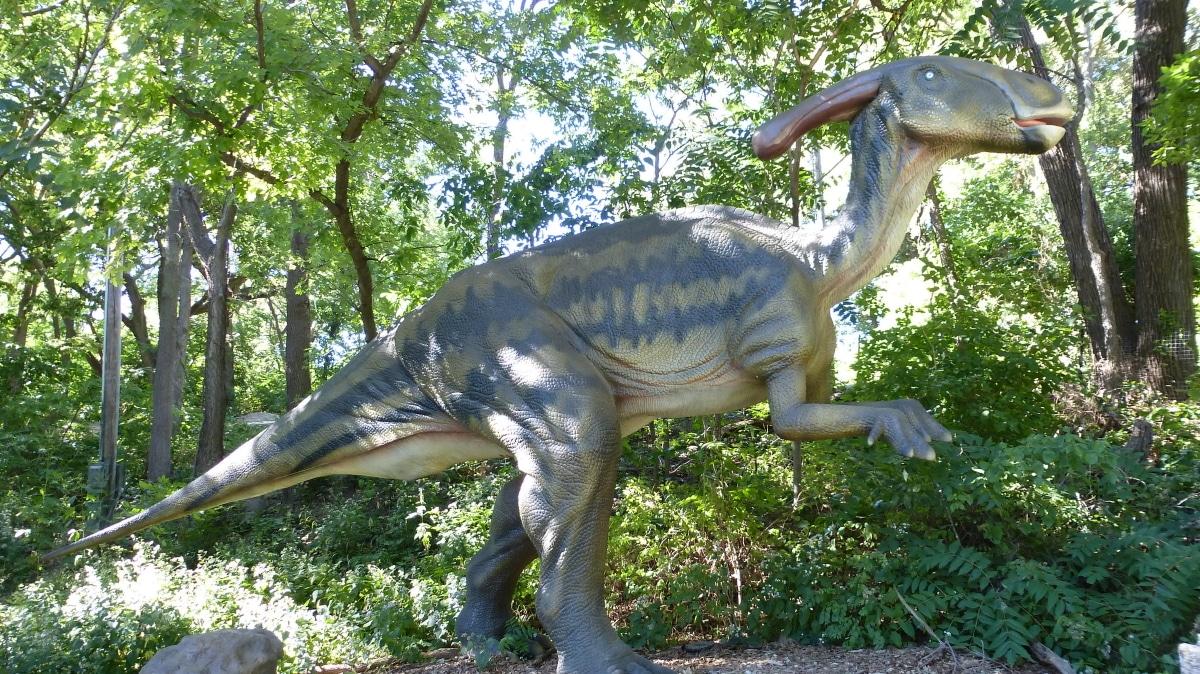 El Parasaurolophus usaba su cresta para la comunicación entre los de su especie