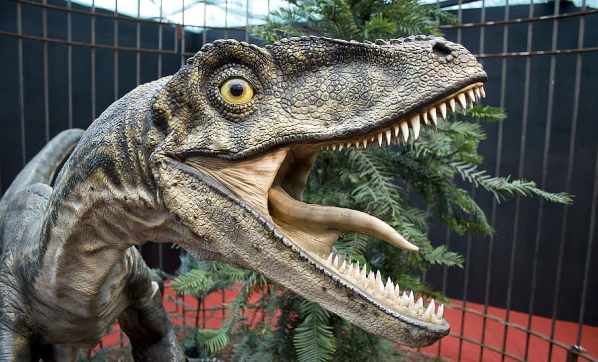 Curiosidades del Velociraptor
