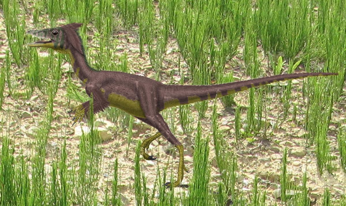 El compsognathus se alimentaba principalmente de pequeños vertebrados e insectos