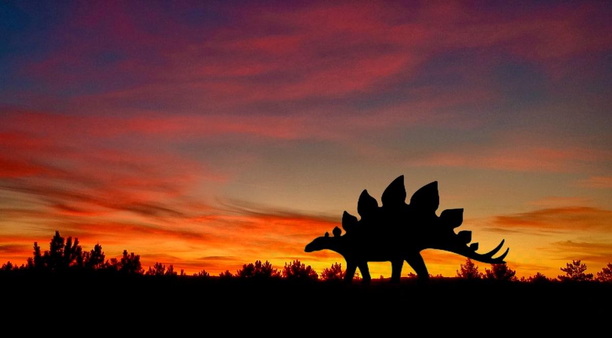 Los Stegosaurus usaban sus placas para regular la temperatura de su cuerpo