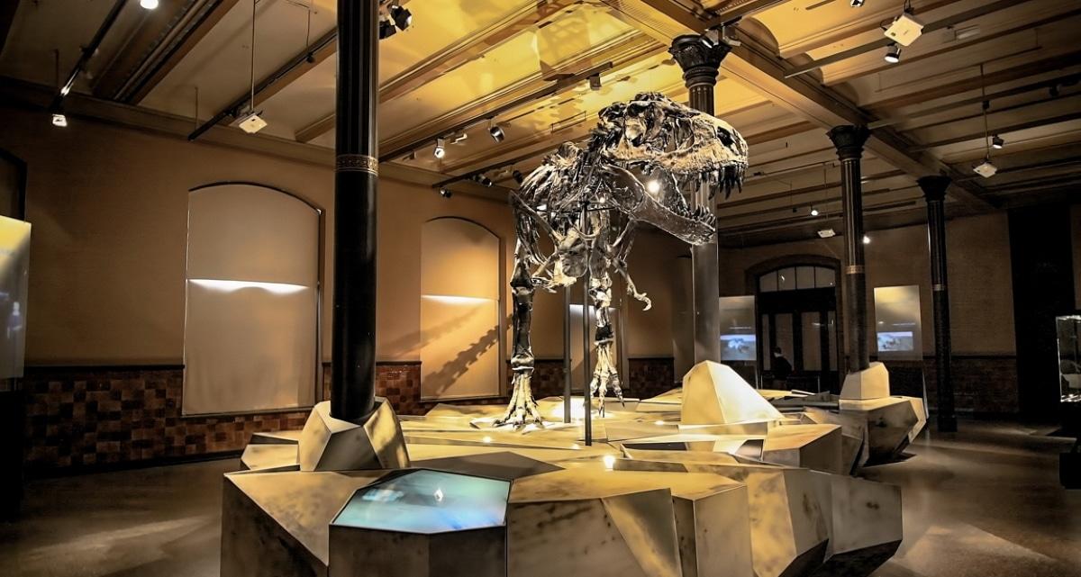 El tiranosaurio rex era mucho más lento moviéndose de lo que se pensaba