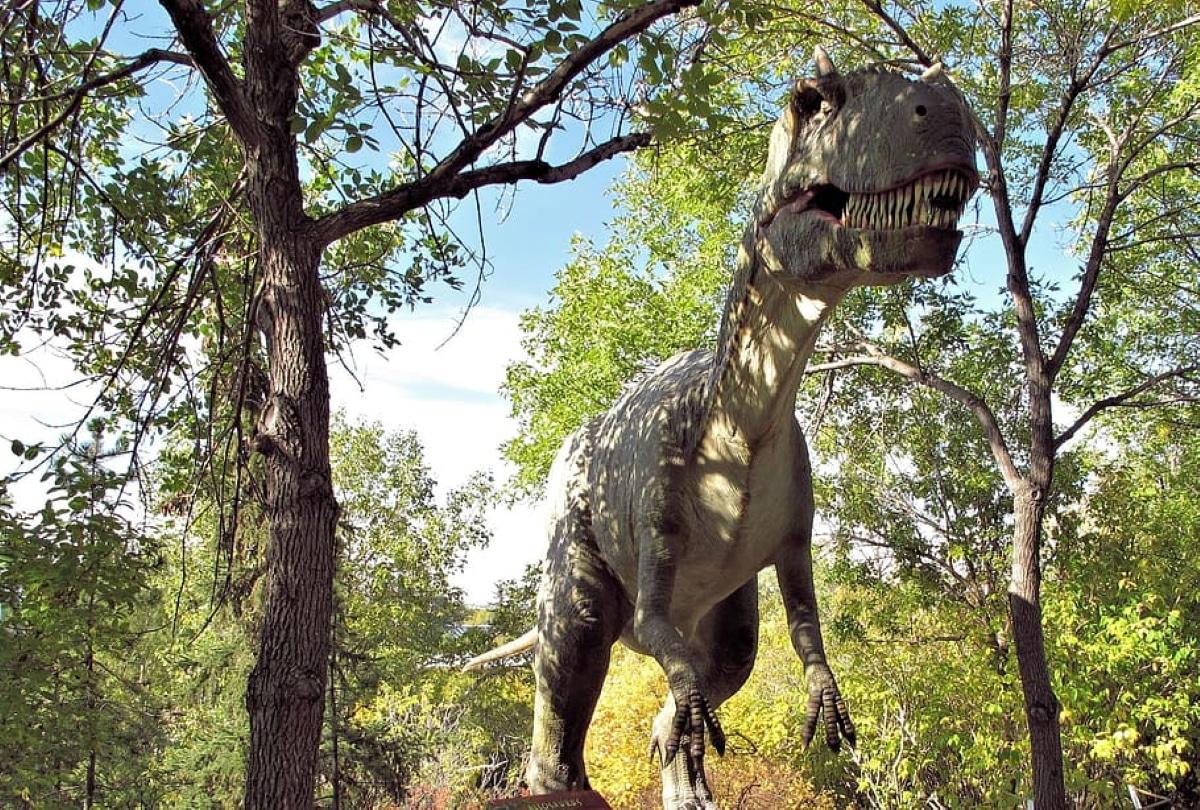 El Allosaurus es el dinosaurio carnívoro del que se han encontrado más restos fósiles