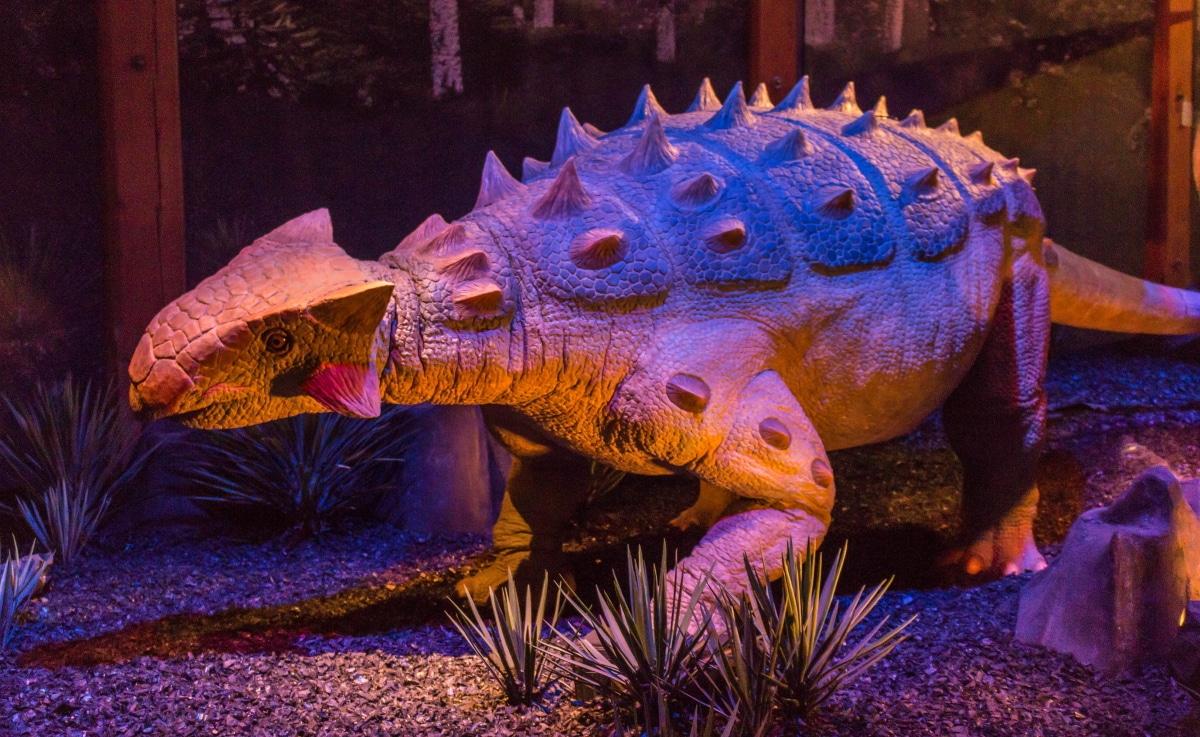 No se ha encontrado un esqueleto completo de anquilosaurio