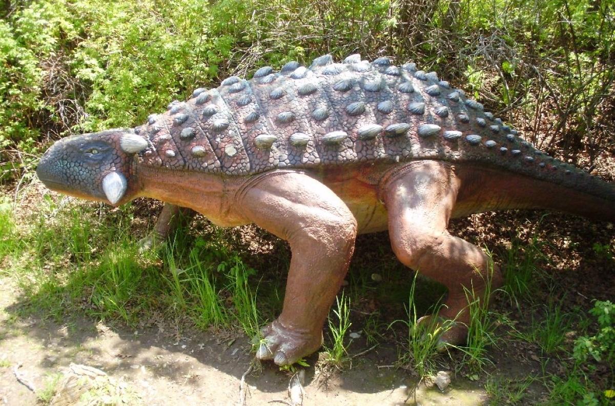 El anquilosaurio tenía un gran mazo en la cola que usaba como defensa