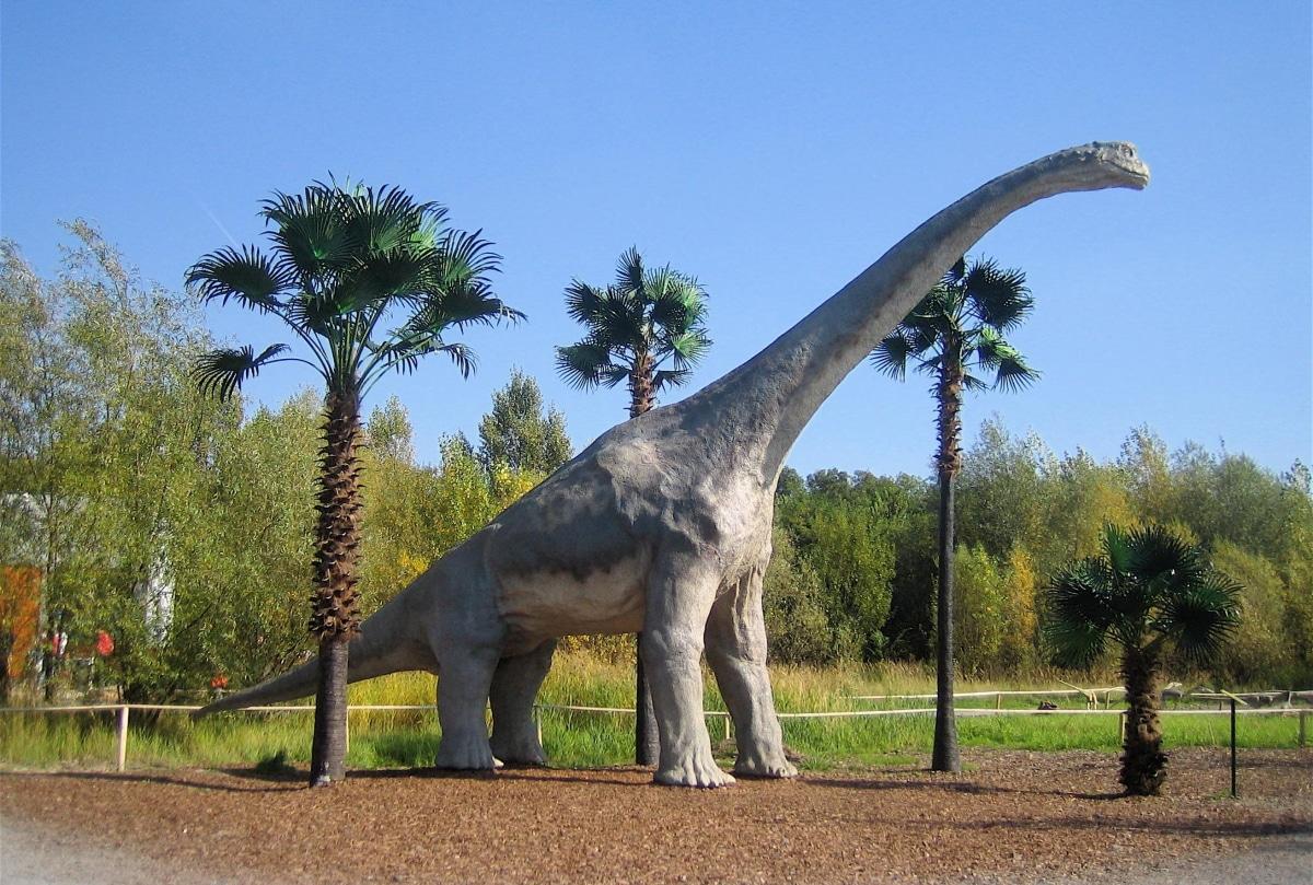El Braquiosaurio se alimentaba princiaplmente de hojas