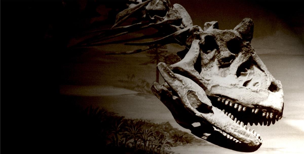El Carnotaurus pertenecio al periodo Cretácico superior