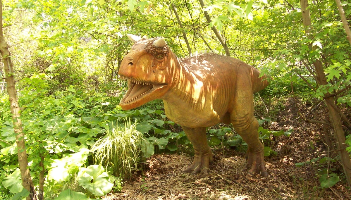 El nombre de Carnotaurus significa toro carnívoro