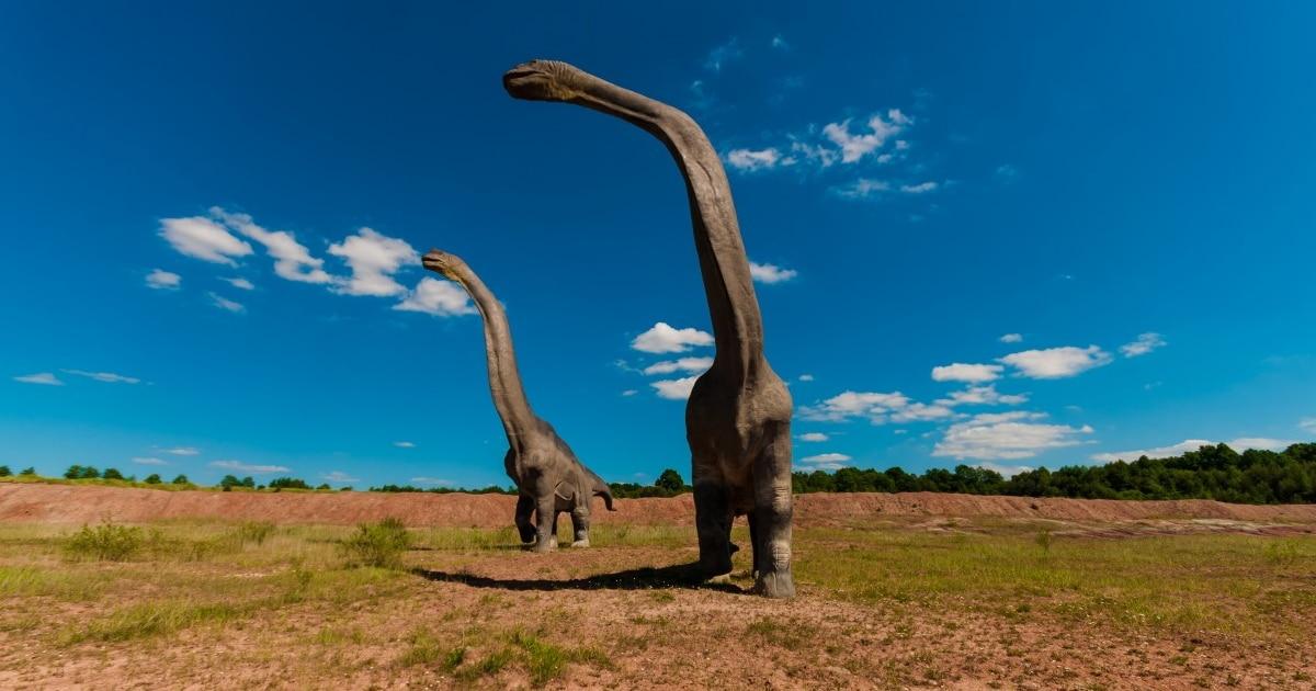 Los Braquiosaurus existieron hace entre 154 y 153 millones de años