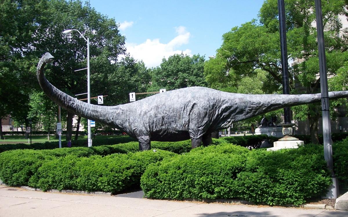El Diplodocus podía colocarse a dos patas de forma bípeda para alcanzar alimento hasta a 11 metros de altura