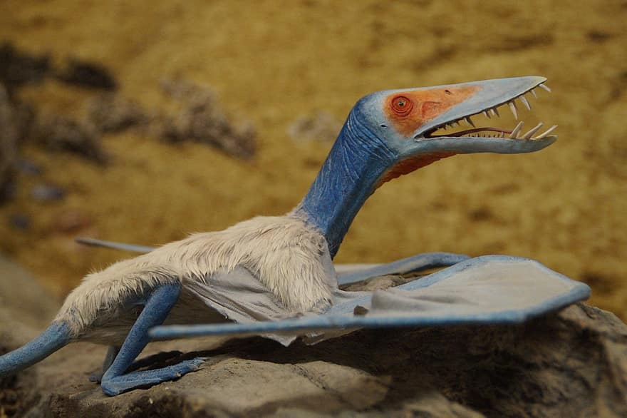 Los pterosaurios podían alcanzar los 120km/h