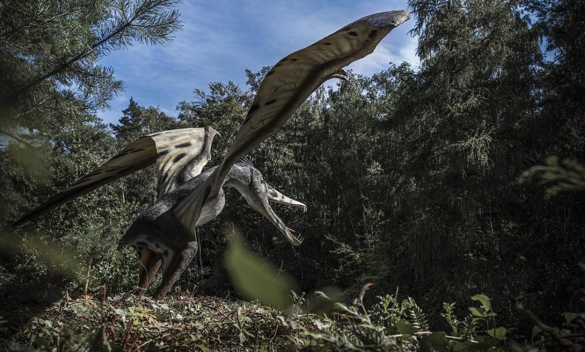 El Pterosaurio vivió hace entre 228 y 66 millones de años