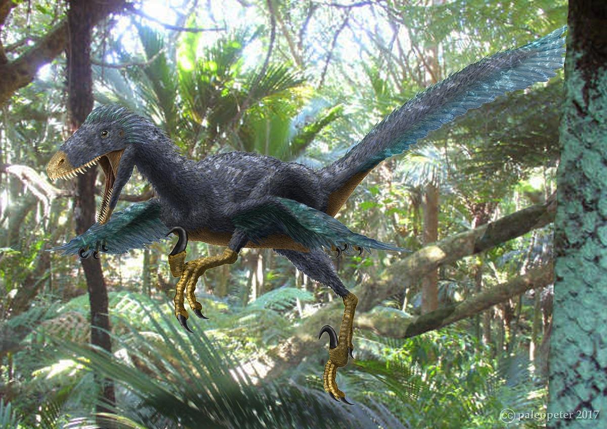 El Deinonychus tenía plumas.