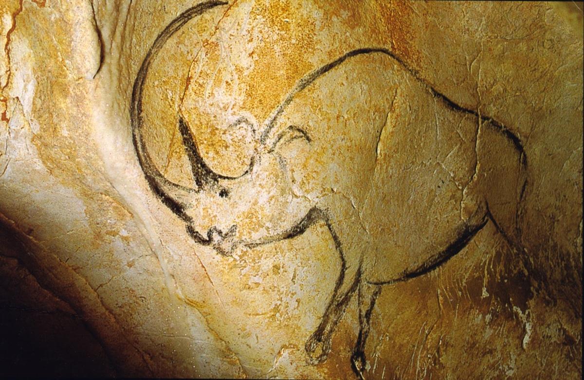 Se sabe cuál fue el aspecto del rinoceronte lanudo gracias a pinturas rupestres
