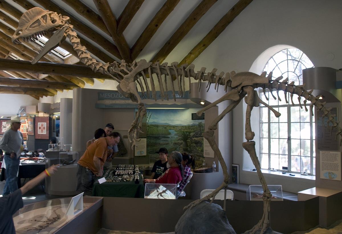 El Dilophosaurus medía 7 metros de largo y pesaba 400 kilos