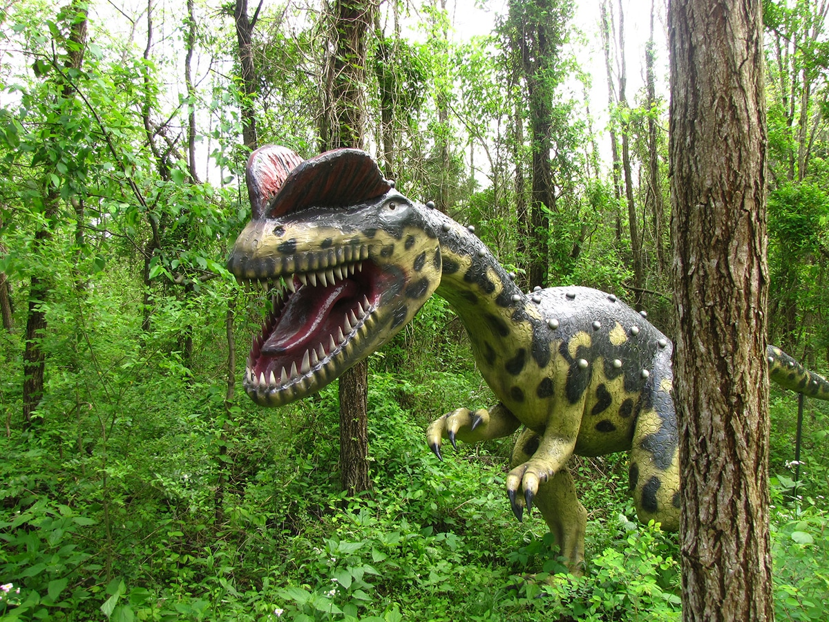 El dilophosaurus pudo haber sido piscívoro.