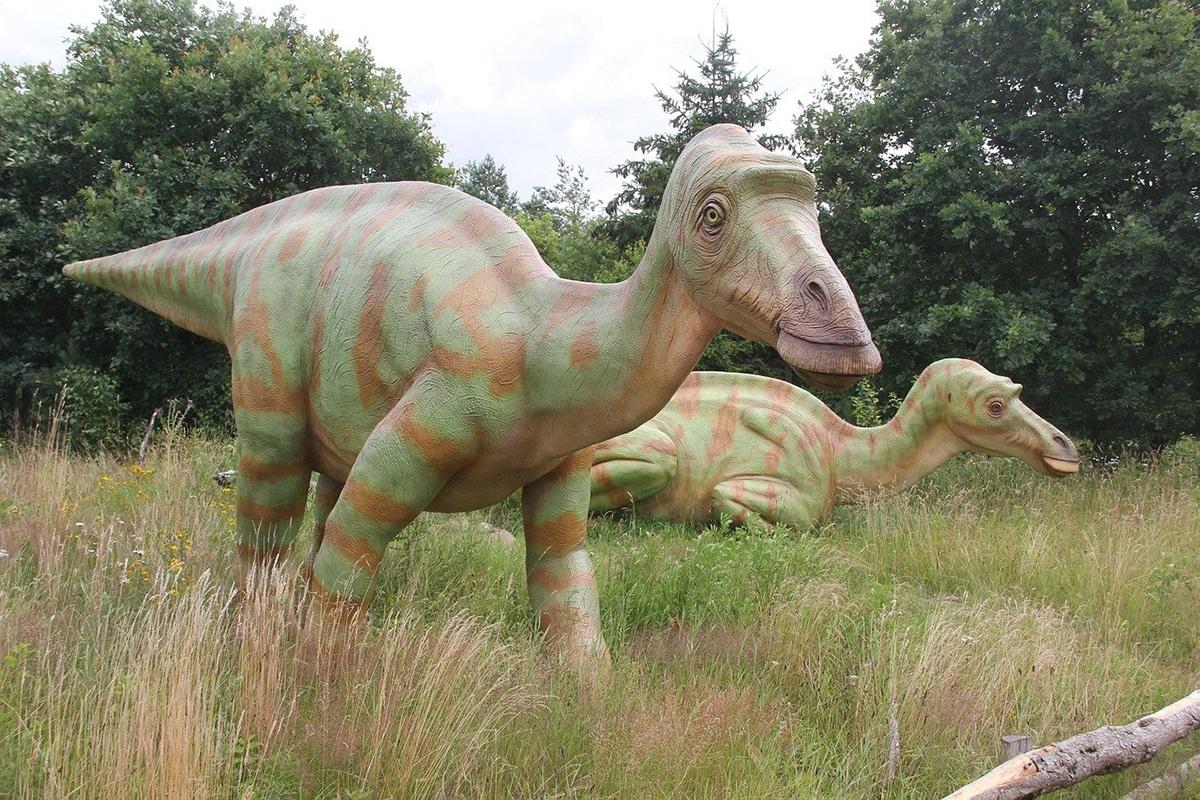 Maiasaura tiene la historia de vida más detallada entre todos los dinosaurios