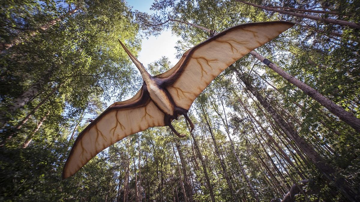 El Quetzalcoatlus pudo haber sido un pterosaurio no volador