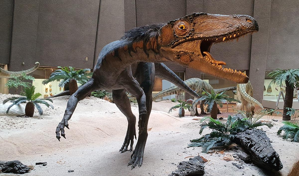 La mayoría de terópodos eran carnívoros y evolucionaron a omnívoros