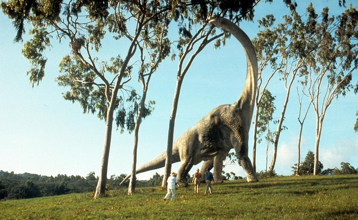 caracteristicas del apatosaurus