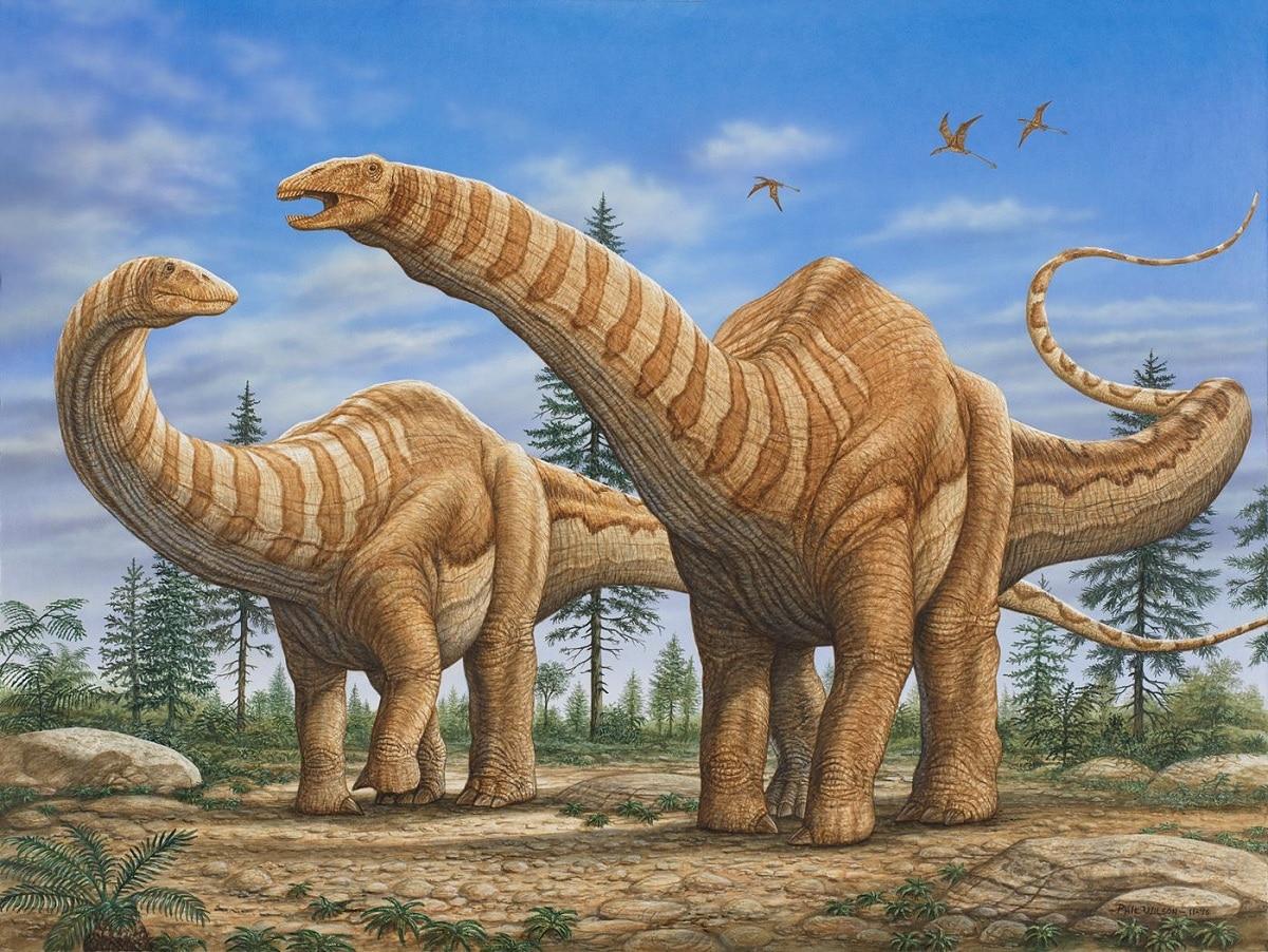 cuello largo de dinosaurio