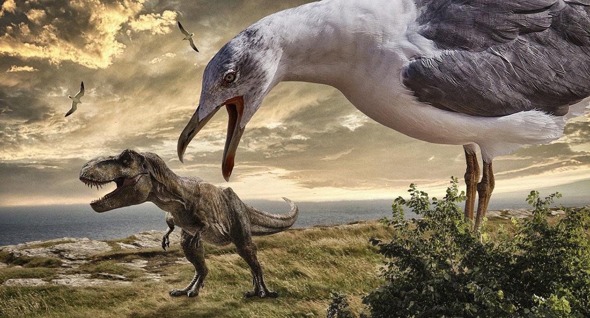 Los dinosaurios con plumas son los predecesores de las aves modernas