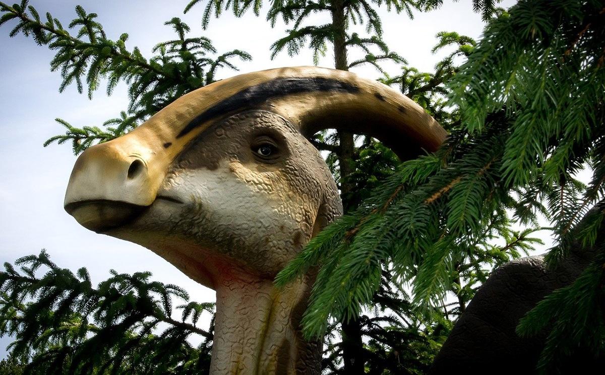 Los dinosaurios herbívoros tienen una dentadura diferente a los carnívoros