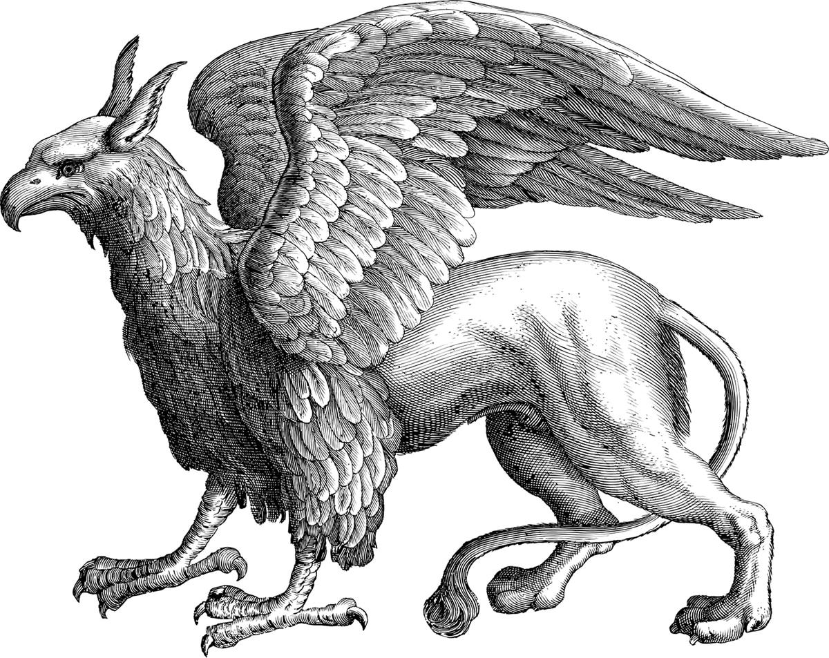 El Protoceratops es el origen de las leyendas y los mitos acerca de los grifos