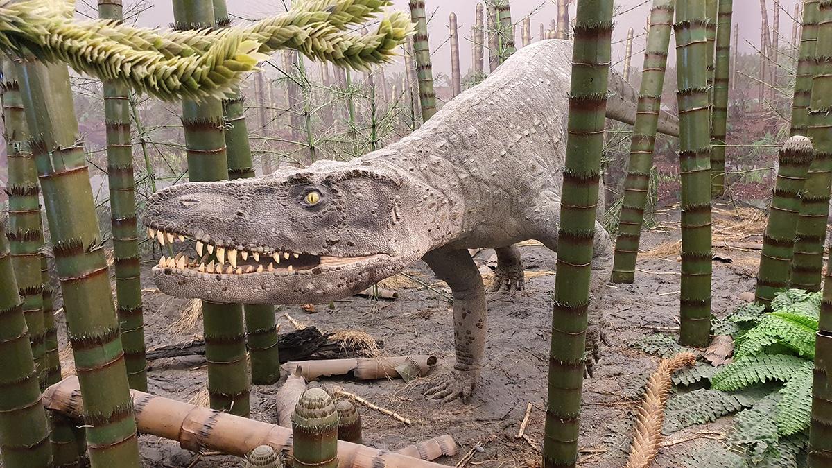 Los dinosaurios carnívoros cazaban en solitario o en manada