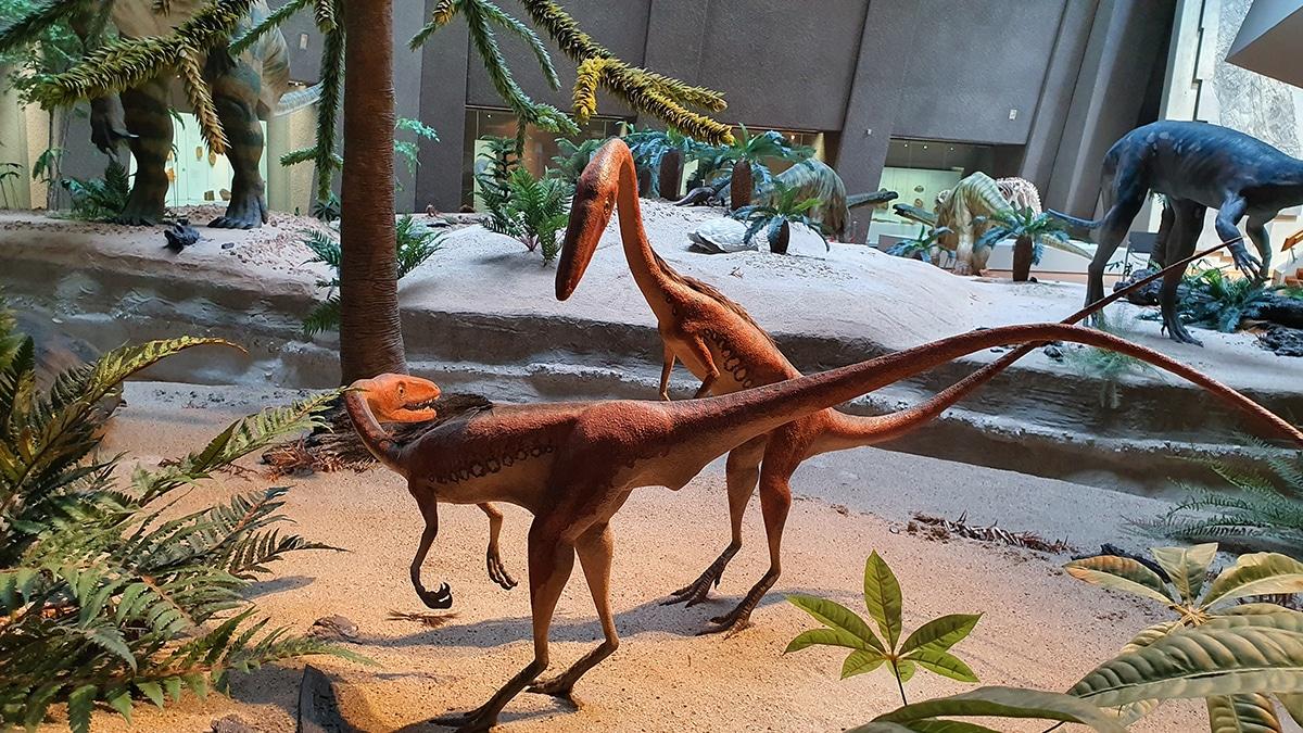 Existían dinosaurios carnívoros de todos los tamaños