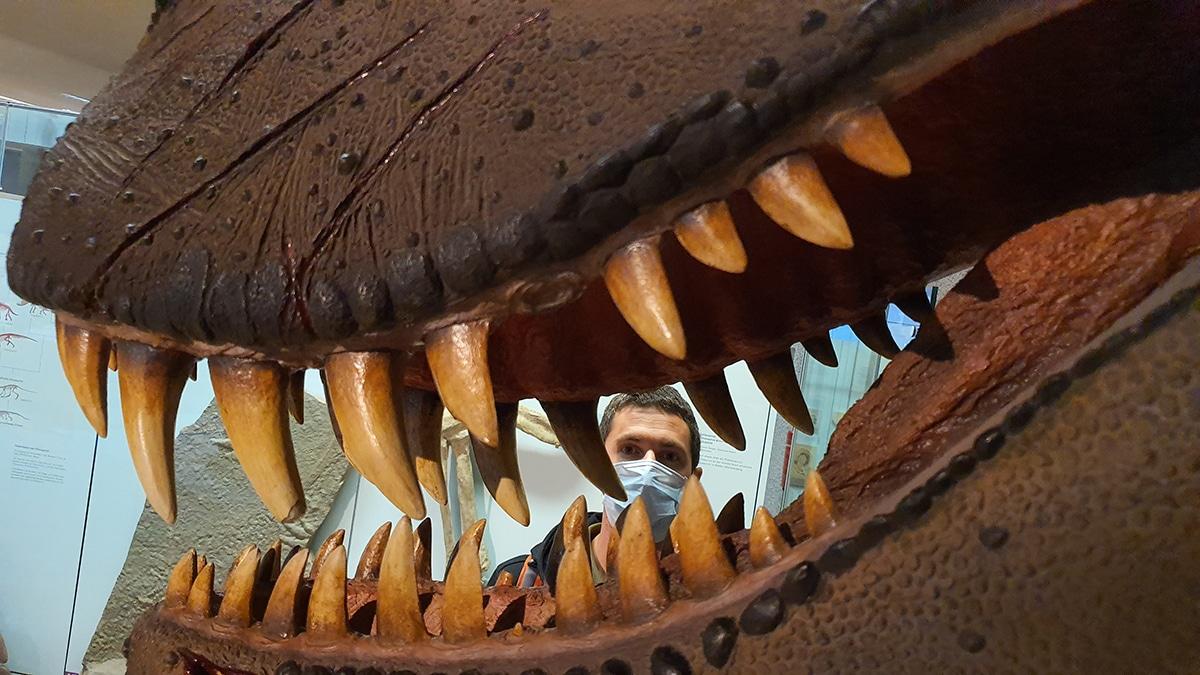 Todos los dinosaurios carnívoros tienen algunos rasgos en común