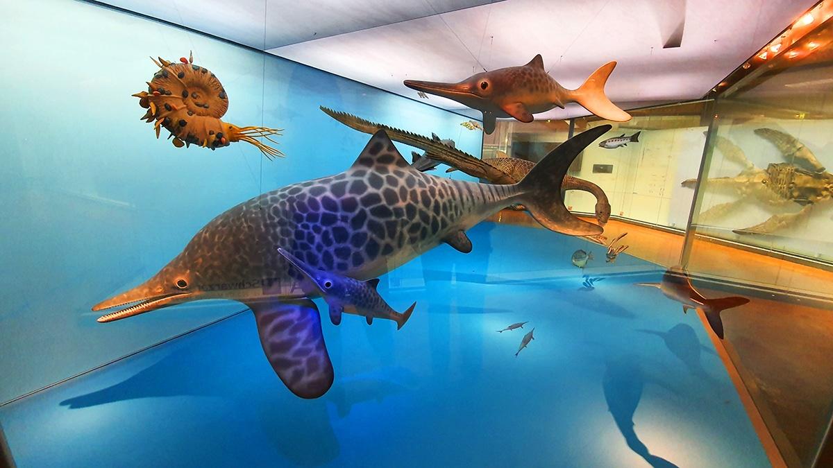 Los ictiosaurios son reptiles marinos parecidos a delfines
