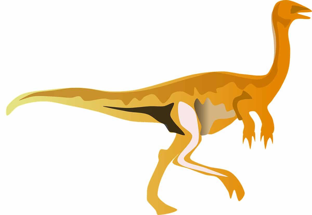 El Gallimimus es muy parecido a un avestruz