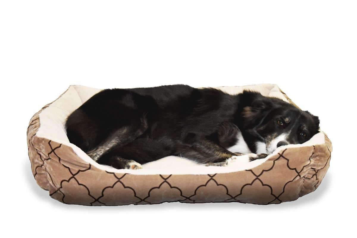Cómo hacer una casa para perros tipo puff