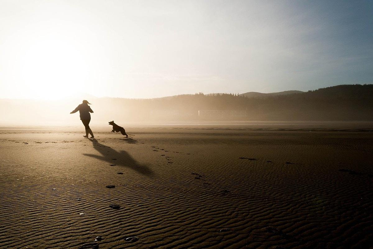 Muchas playas tienen algunas restricciones para ir con perros