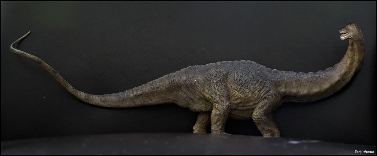 El apatosaurus era un dinosaurio cuellilargo muy famoso