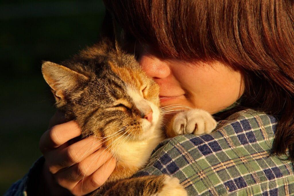 Las personas aléregicas no pueden acercarse los gatos a la cara