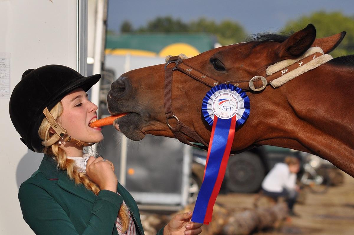 Existen muchas frutas y verduras que pueden comer los caballos con moderación