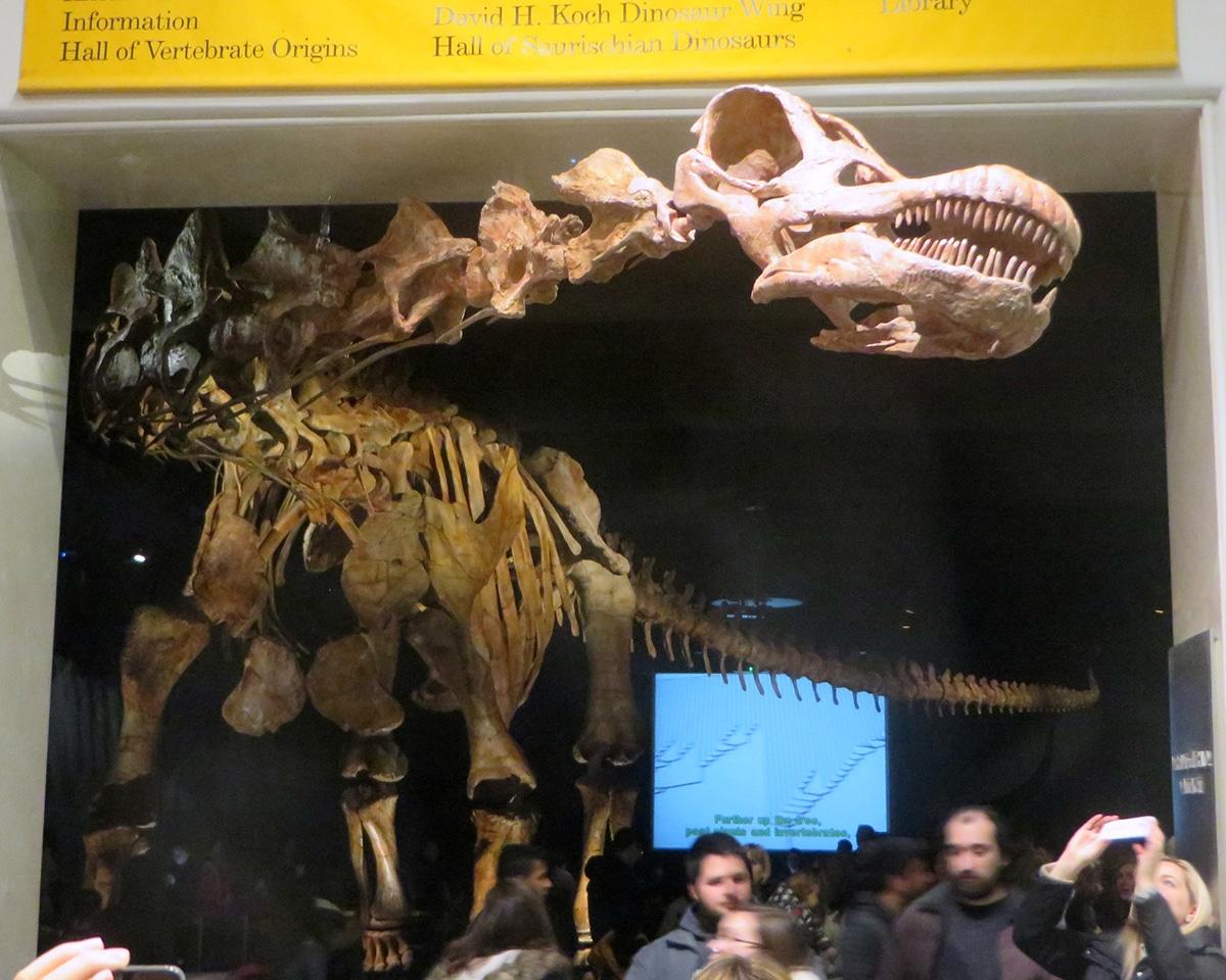 El Titanosaurio fue un cuellilargo